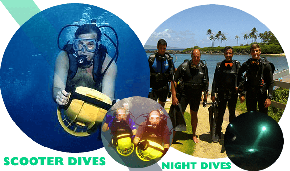 Night Dives and Scooter Dives