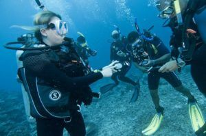 scuba education