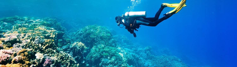 Scuba Diver Instructor in Maui