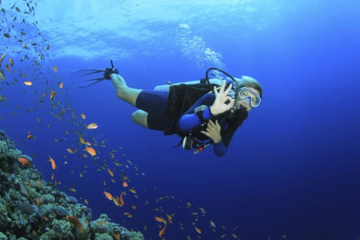 Maui Scuba Diving Packages