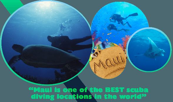 Maui scuba diving