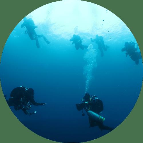 private dive tours Maui