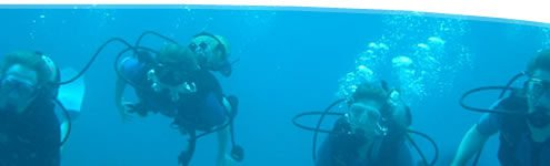 beginner private scuba lessons Maui